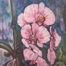 Phalaenopsis 20x20 (SOLD)
